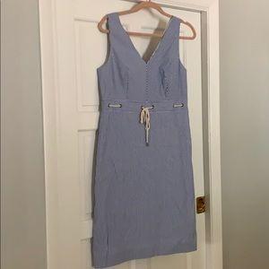 NWT JCrew Blue and white dress